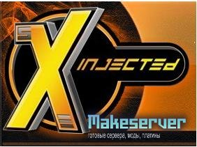 sXe Injected