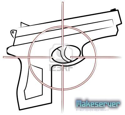 Weapons Crosshairs